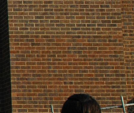 Masonary colouring to repair brick faults?