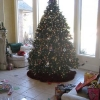 Read Article: Post-Holiday Home Tips: Storing Your Decorations by Simply Sheds ACT