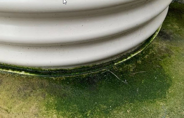 Leaking tank? Maybe something else?