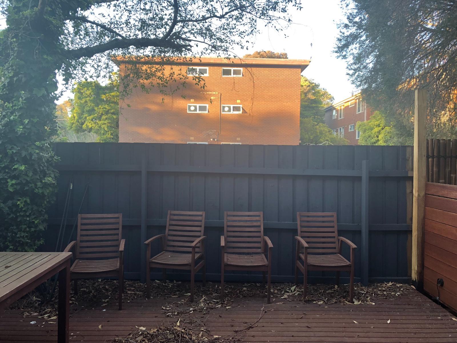 Backyard screening plant advice
