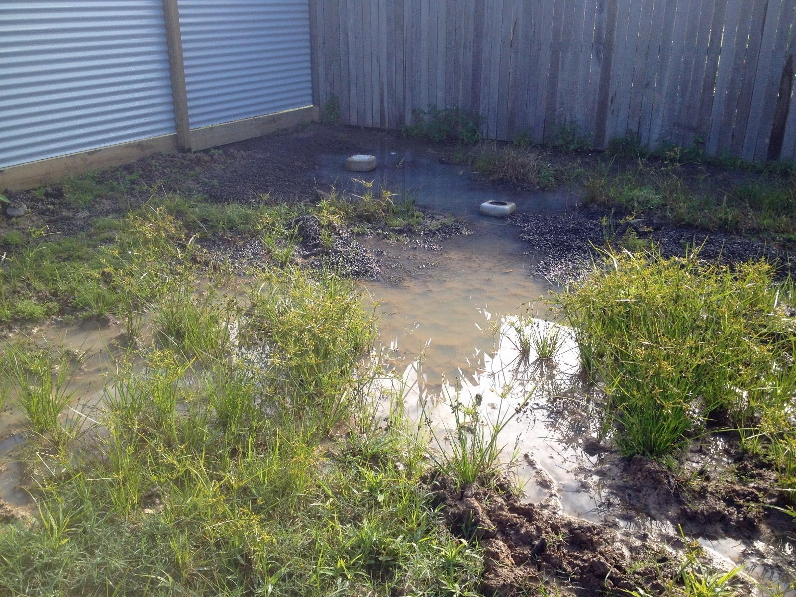 Water tanks and building codes